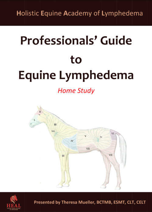 Professional's Guide to Equine Lymphedema