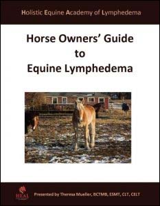 Horse Owners Guide to Equine Lymphedema